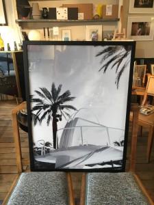 encadrement photographie palmier USA lola james harper lartetlafaçon paris batignolles